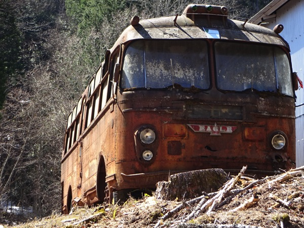 egle バス