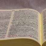 [作詞のコツ] 作詞で使える辞書サイトをご紹介。その①