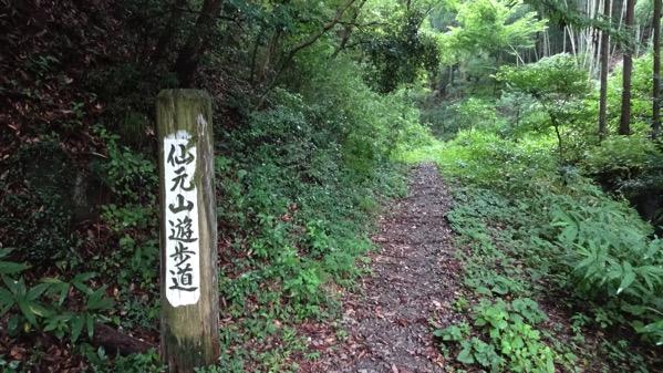 仙元山,登山道入口