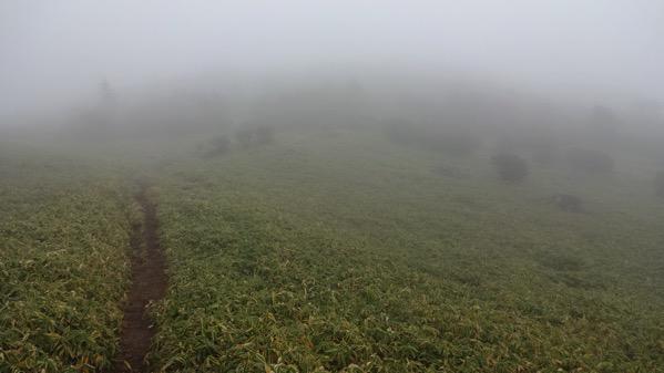 赤薙山 霧降高原