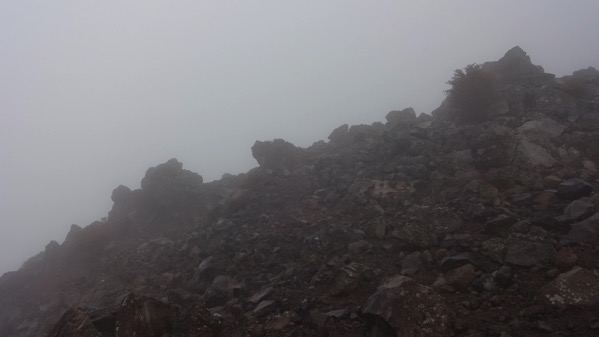 赤薙山 岩