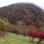 赤薙山に登山!(霜降高原発)尾根道から綺麗な紅葉風景が見れるはずが・・・。