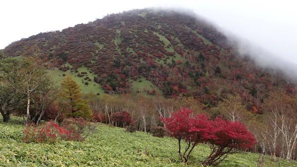 赤薙山 丸山 登山
