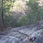鹿沼 岩山の猿岩下りに挑戦する前に知っておいた方が良い事
