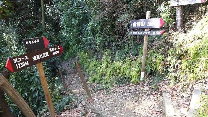 金勝山 コース