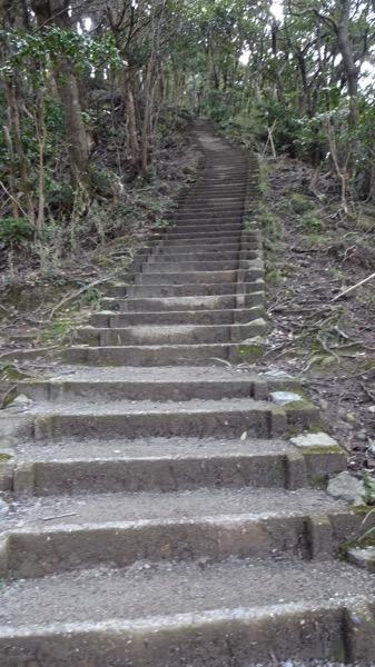 鋸山 階段 登山