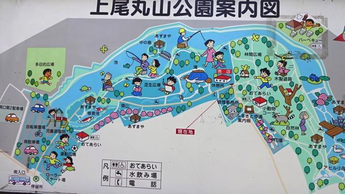 上尾丸山公園  案内図