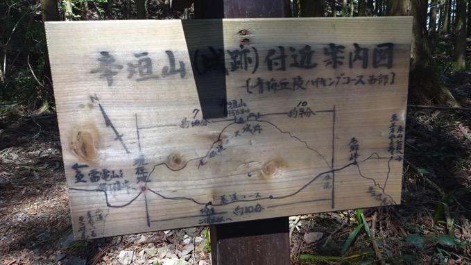 青梅丘陵ハイキング 辛垣山  コース
