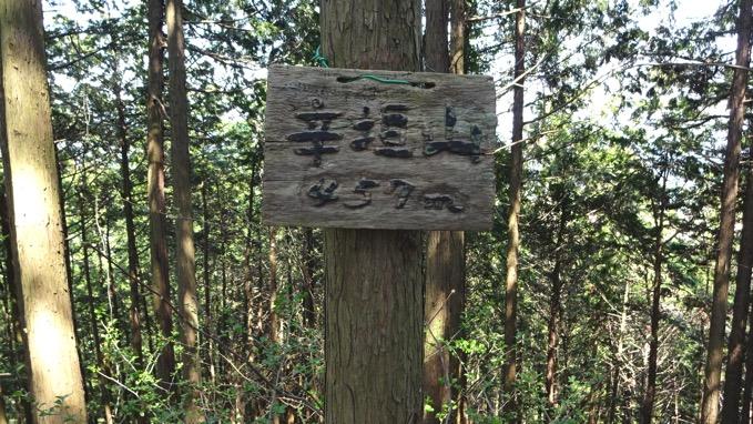 青梅丘陵ハイキング 辛垣山