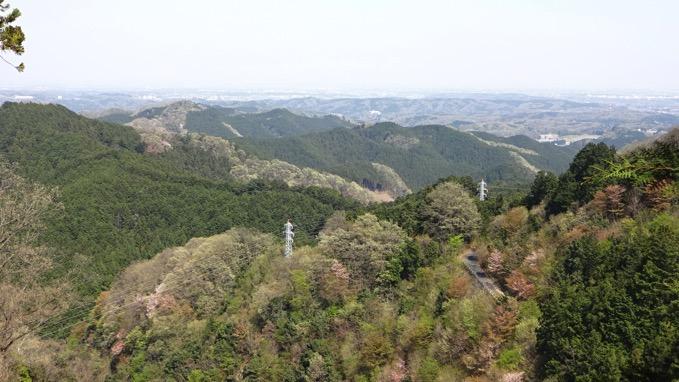 青梅丘陵ハイキング コース