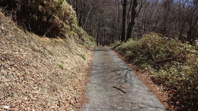 大菩薩嶺 登山道 舗装路