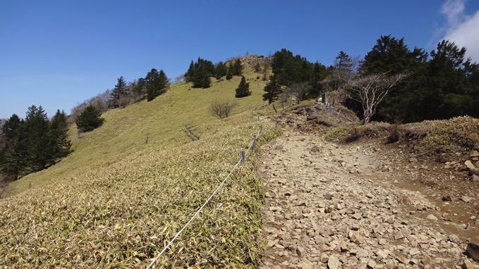 大菩薩嶺 稜線