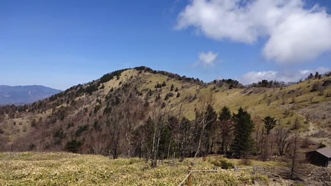 大菩薩峠 稜線 風景
