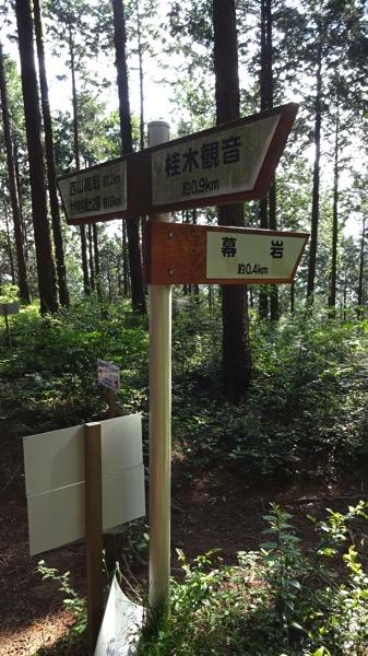 大高取山の肩 分岐 ハイキングコース