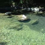 三波渓谷 川遊びとバーベキューができる、ときがわ町のオススメ観光スポット