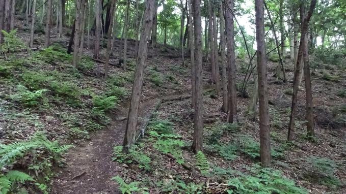 龍崖山 登山 コース