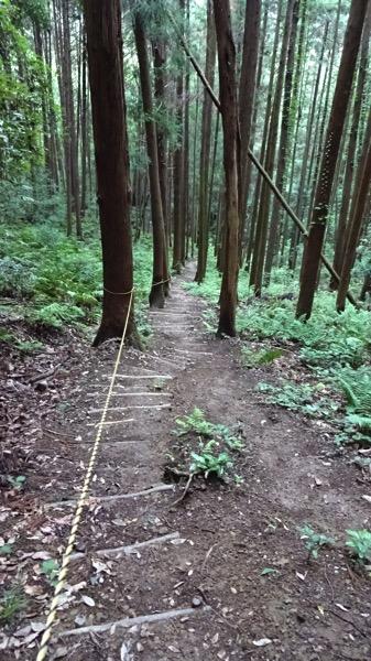 龍崖山 ロープ坂 登山 コース