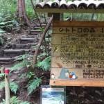 狭山丘陵ハイキングでトトロの森をめぐる [所沢市]