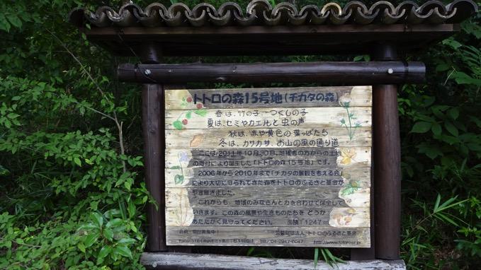 トトロの森15号地
