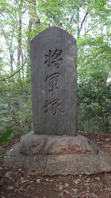 荒幡の富士 八国山緑地 将軍塚