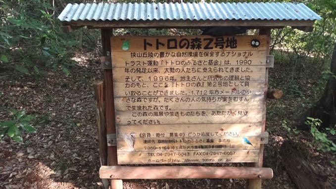 荒幡の富士 トトロの森2号地