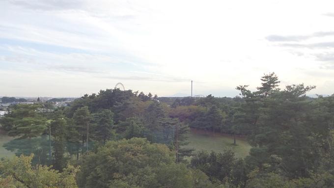 荒幡の富士 所沢 展望