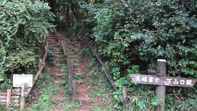 荒幡の富士 所沢 市民の森