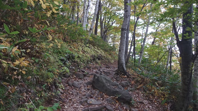 藻岩山 登山 コース