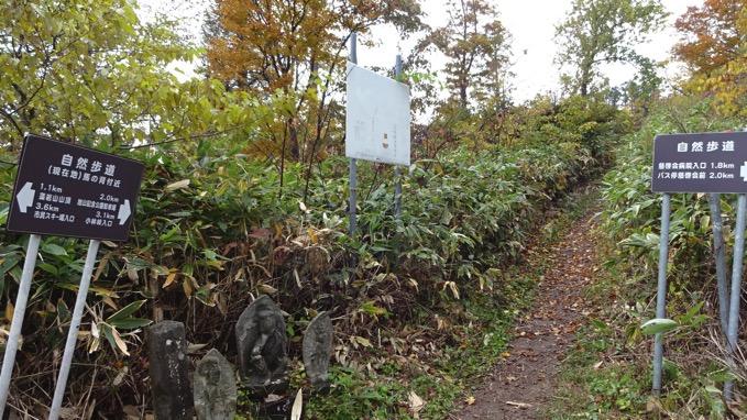 藻岩山 登山 T6分岐 コース