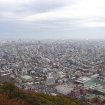 円山に登山。原始林と山頂からの札幌の街の眺めが素晴らしい![北海道札幌市]
