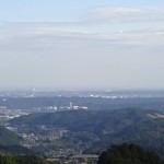 大高山・天覚山に登山!初めて熊の爪痕を見た。 [埼玉県飯能市]