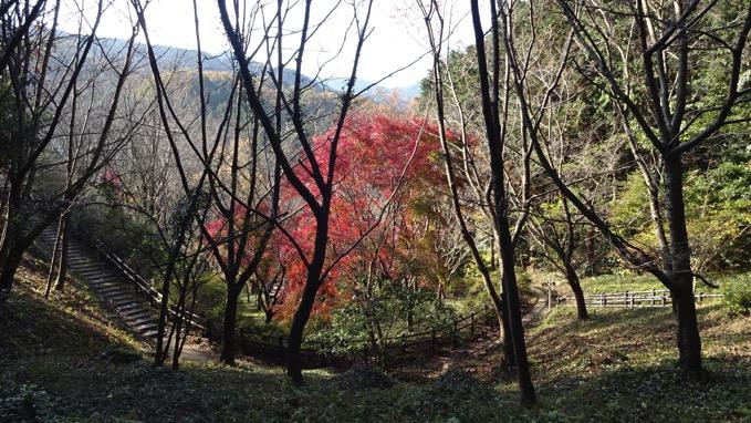 鎌北湖 ハイキング