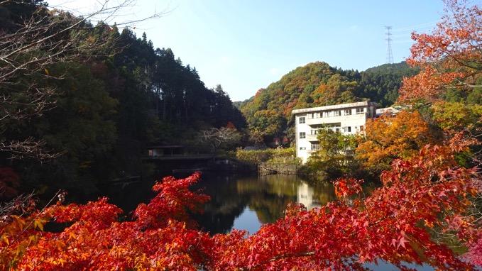 鎌北湖 ハイキング 紅葉