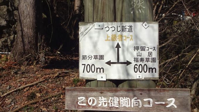 四阿屋山 登山 つつじ新道