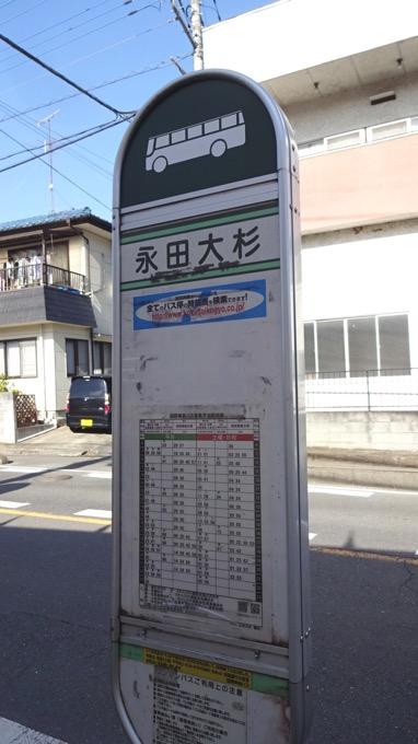 柏木山 高ドッケ ハイキング 永田大杉バス停