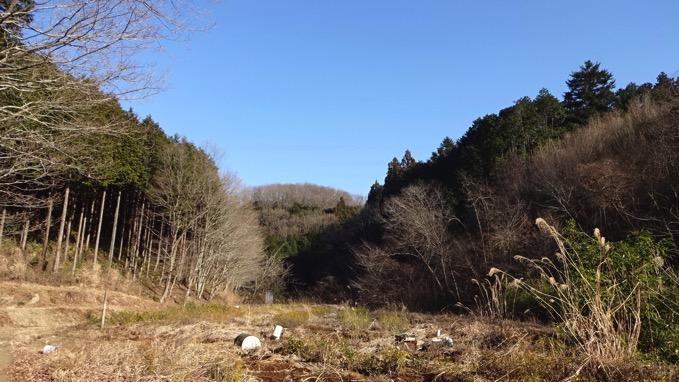 柏木山 ハイキング 登山