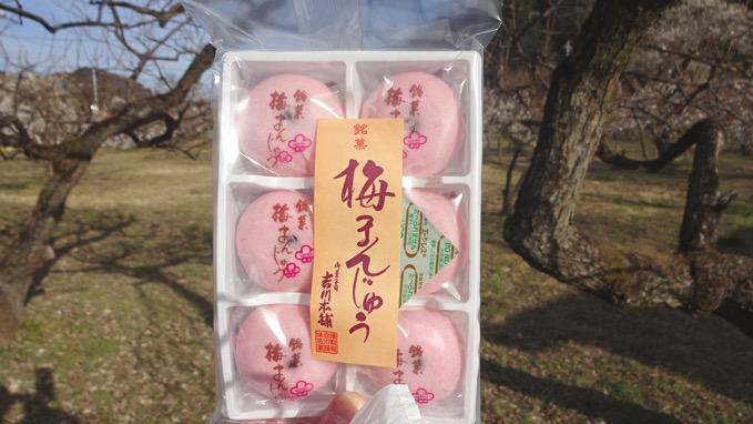 越生銘菓 梅まんじゅう