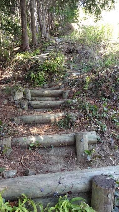 陣見山 登山 木段