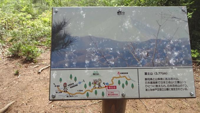 霞丘陵ハイキング 富士山