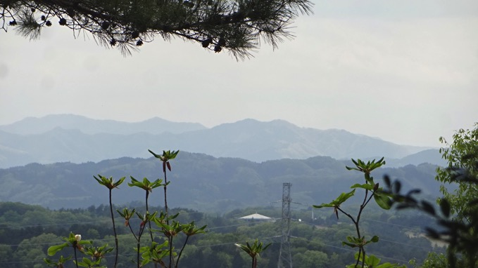 霞丘陵ハイキング