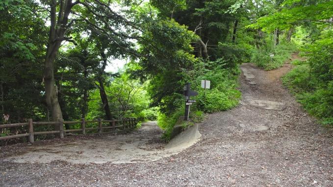 草戸山 ハイキング コース