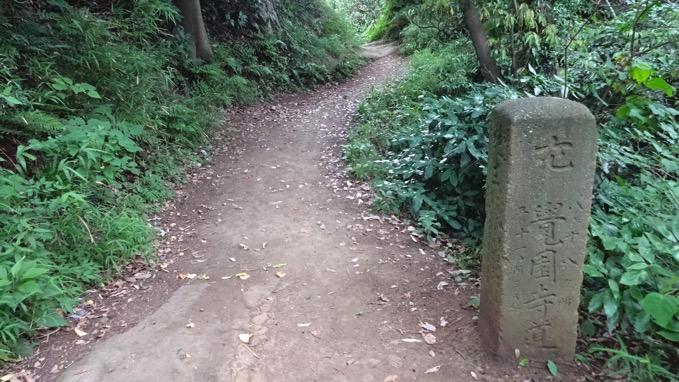 鎌倉アルプス ハイキング コース