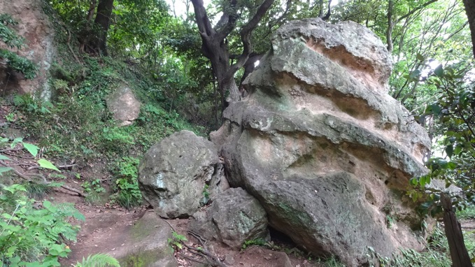 鎌倉アルプス ハイキング
