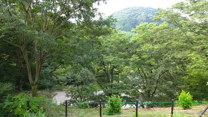 嵐山渓谷 展望台