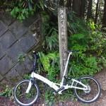 鋸山林道(大ダワ)自転車ヒルクライム&鋸山・鞘口山に登山 [東京都奥多摩町]