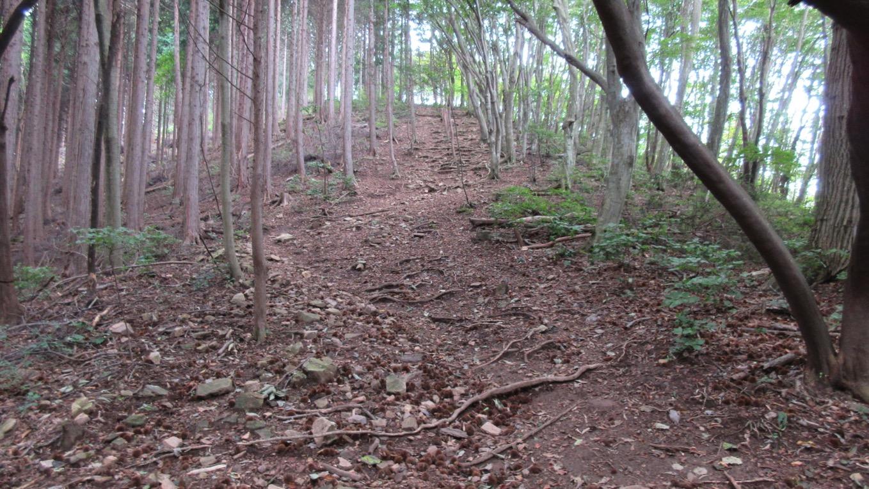堂平山 登山