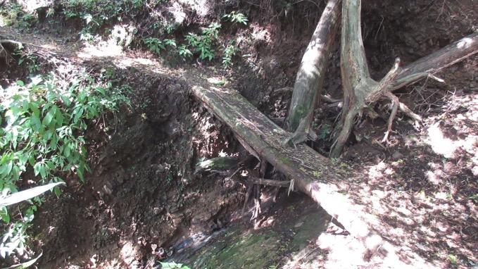 矢倉岳 登山
