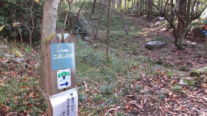 生駒山 こぶしの谷