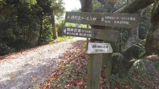 生駒山 摂河泉ハイキングコース