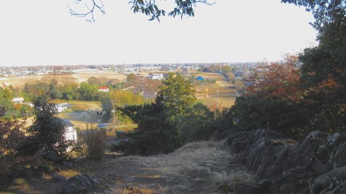 ポンポン山 埼玉